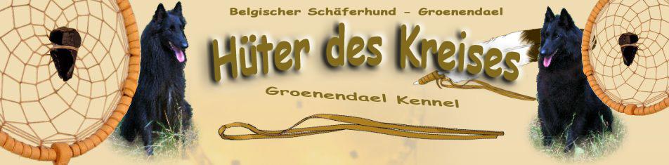 Belgische Schäferhunde Niklaus Groenendael Kennel